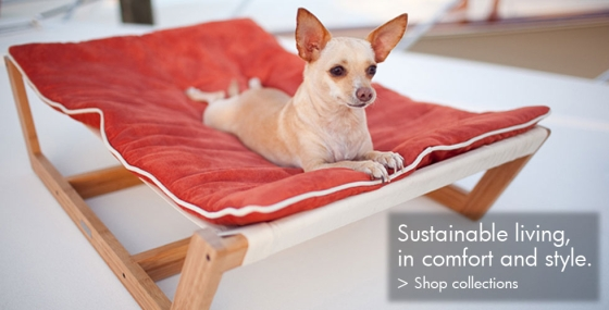 Sustainable Pets Living EcoLuxuryStyle